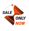 only now sale offer isolated icon countdown and vector image vector image