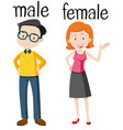 opposite wordcard for male and female vector image vector image