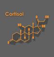 steroid hormone cortisol vector image vector image