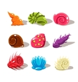 Cartoon Sea Shells Set vector image