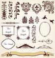 Decorative Ornaments Vintage Design vector image