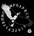 flying black raven and ancient scandinavian runes vector image