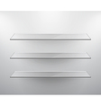 glass shelves vector image