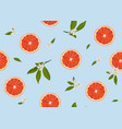 orange fruits slice seamless pattern with flowers vector image vector image