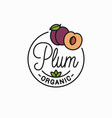 plum fruit logo round linear logo slice vector image vector image