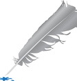 Bird feather vector image vector image