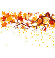 fall maple branch vector image vector image