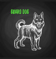 guard dog in chalk style on blackboard vector image vector image