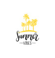 hand lettering inspirational poster summer vibes vector image