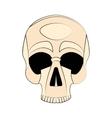 Icon human skull vector image vector image
