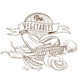 Outline hand drawn sketch vegetable still life vector image vector image
