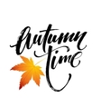 Autumn time seasonal banner design Fal leaf vector image vector image