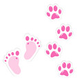 cute pink baby footprint and pet paws vector image