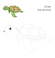 Draw the sea animal turtle educational vector image vector image