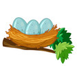 egg on the nest vector image