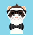 ferret boy portrait with glasses and butterfly vector image vector image