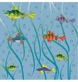 Fish in sea vector image vector image