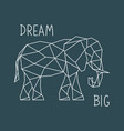 polygonal elephant print with lettering vector image