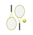 Tennis Rackets with Ball vector image vector image