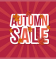 autumn sale leaves background vector image vector image