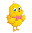 cartoon chick vector image vector image