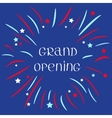 Fireworks ball Star and strip Grand opening vector image