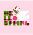 hello spring lettering and white dove with flower vector image