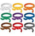 martial arts belts rank system vector image