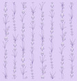 seamless pattern lavender flowers on a violet vector image