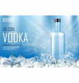 vodka bottle with ice cubes ad strong alcohol vector image vector image