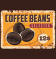 coffee roasted beans rusty plate vector image