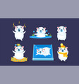 cute white guinea pig character set funny cavy in vector image
