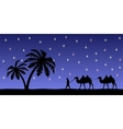 Man with camels in the night sky vector image vector image