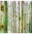 Painted Wooden Planks vector image vector image