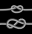 rope knots borders line set design element vector image vector image