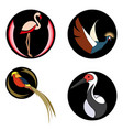 set of bright birds on black circles for logo vector image vector image