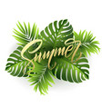 summer lettering on palm leaf background vector image vector image
