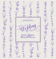 wedding invitation with blossom lavender bridal vector image