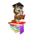 wise owl reading vector image
