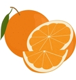 Fresh oranges fruits with green leaf whole and vector image