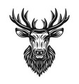 deer head object or design element isolated vector image vector image