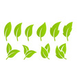 green leaf set eco vector image