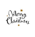 merry christmas new year calligraphy vector image vector image