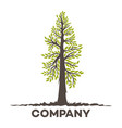modern tree logo vector image vector image