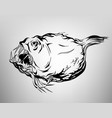 tatoo fish drawing ink white and black vector image vector image
