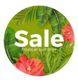 tropical summer sale promotional poster vector image