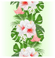 vertical border seamless background vector image vector image