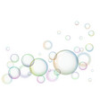 round soap bubbles on white background vector image