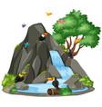 background scene toucan birds waterfall vector image vector image