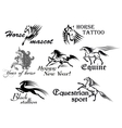Fast stallions and mustangs vector image vector image